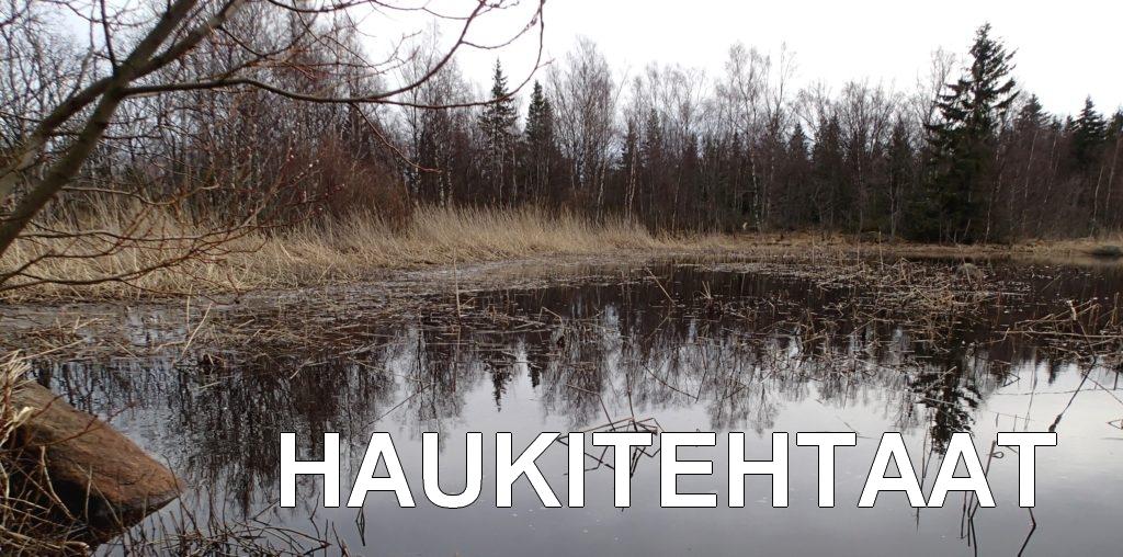 Haukitehtaat